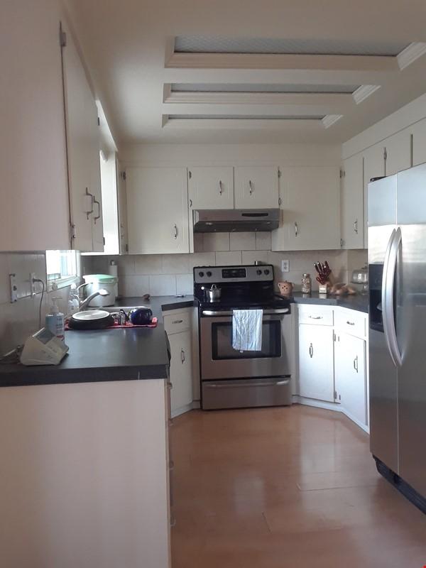 Cozy Semi-Detached in Inner City Neighbourhood Home Rental in Calgary 1 - thumbnail