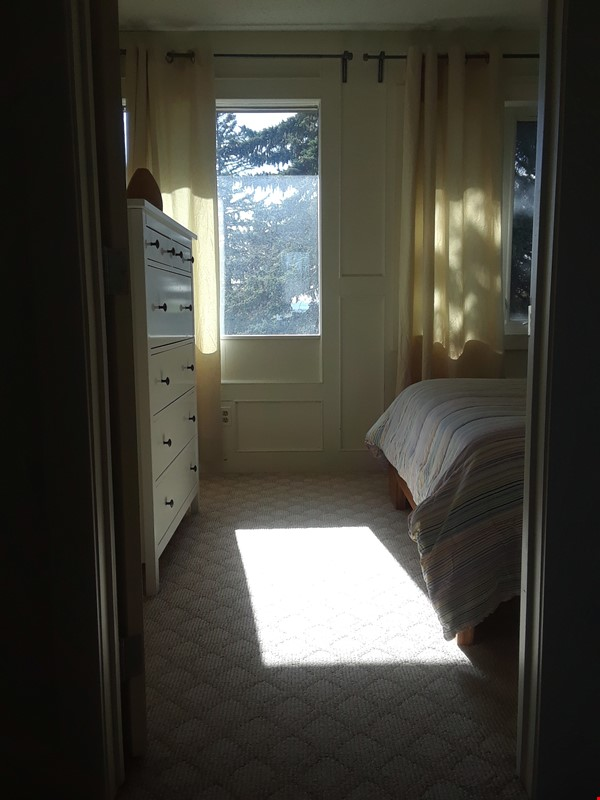 Cozy Semi-Detached in Inner City Neighbourhood Home Rental in Calgary 6 - thumbnail