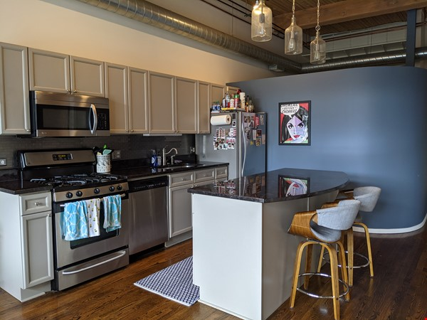 Bucktown/Wicker:*Furnished* spacious lofted condo, walk to dining, CTA, etc Home Rental in Chicago 5 - thumbnail