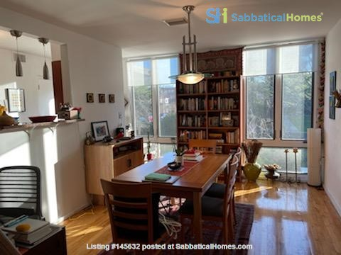 A beautiful, well-lit, furnished modern condo in historic Wooster Square Home Rental in New Haven, Connecticut, United States 5