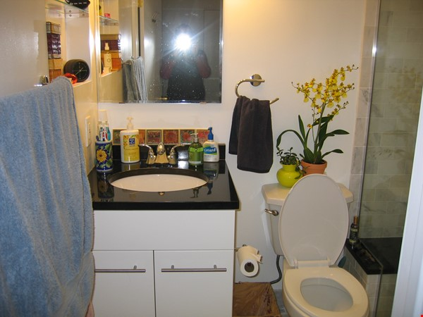 A beautiful, well-lit, furnished modern condo in historic Wooster Square Home Rental in New Haven 6 - thumbnail