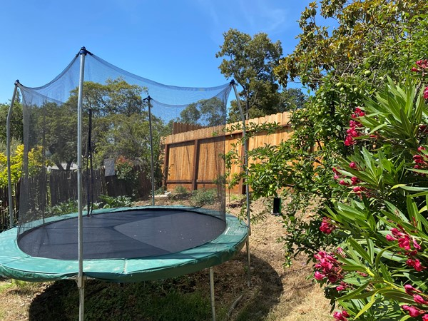 Charming 2-bedroom family-friendly home with big garden Home Rental in Oakland 1 - thumbnail