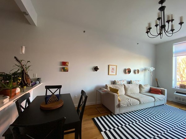 Child safe spacious two bedroom in Park Slope Home Rental in  2 - thumbnail