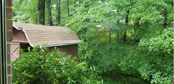 Charming Cape Cod in lovely small-town neighborhood minutes from D.C. Home Rental in Cheverly 9 - thumbnail