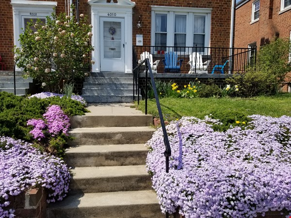 Great Family Home in DC for 2nd Semester Home Rental in Washington 0 - thumbnail