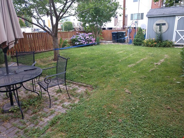 Great Family Home in DC for 2nd Semester Home Rental in Washington 2 - thumbnail