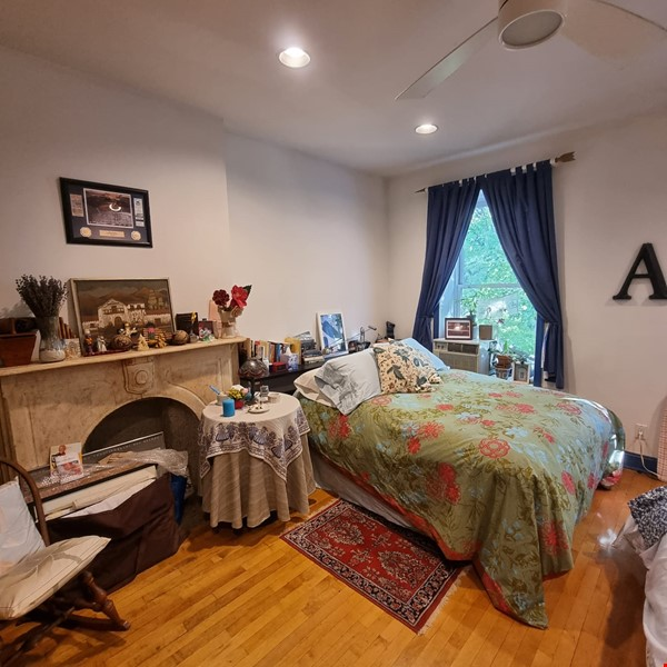 Recently renovated  casually comfortable brownstone Home Rental in  7 - thumbnail