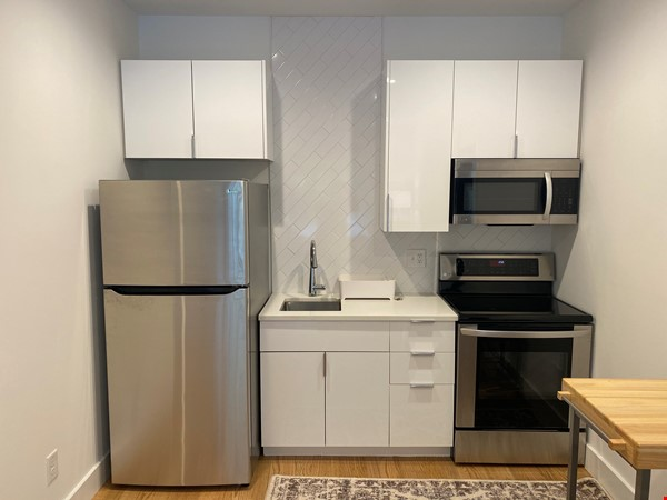 Furnished Brand New Studio Walkable to Duke and Downtown Durham Home Rental in Durham 1 - thumbnail