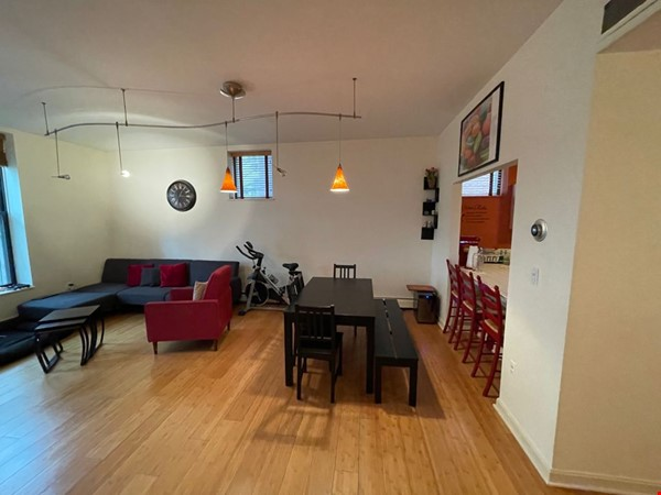 Stunning apartment in the lovely neighborhood of Coolidge Corner Home Rental in Brookline 8 - thumbnail