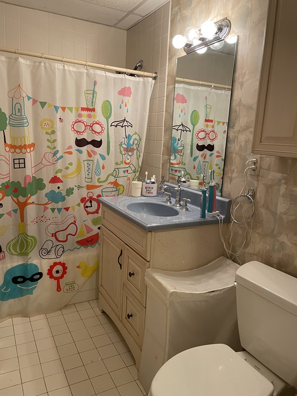 Stunning apartment in the lovely neighborhood of Coolidge Corner Home Rental in Brookline 2 - thumbnail