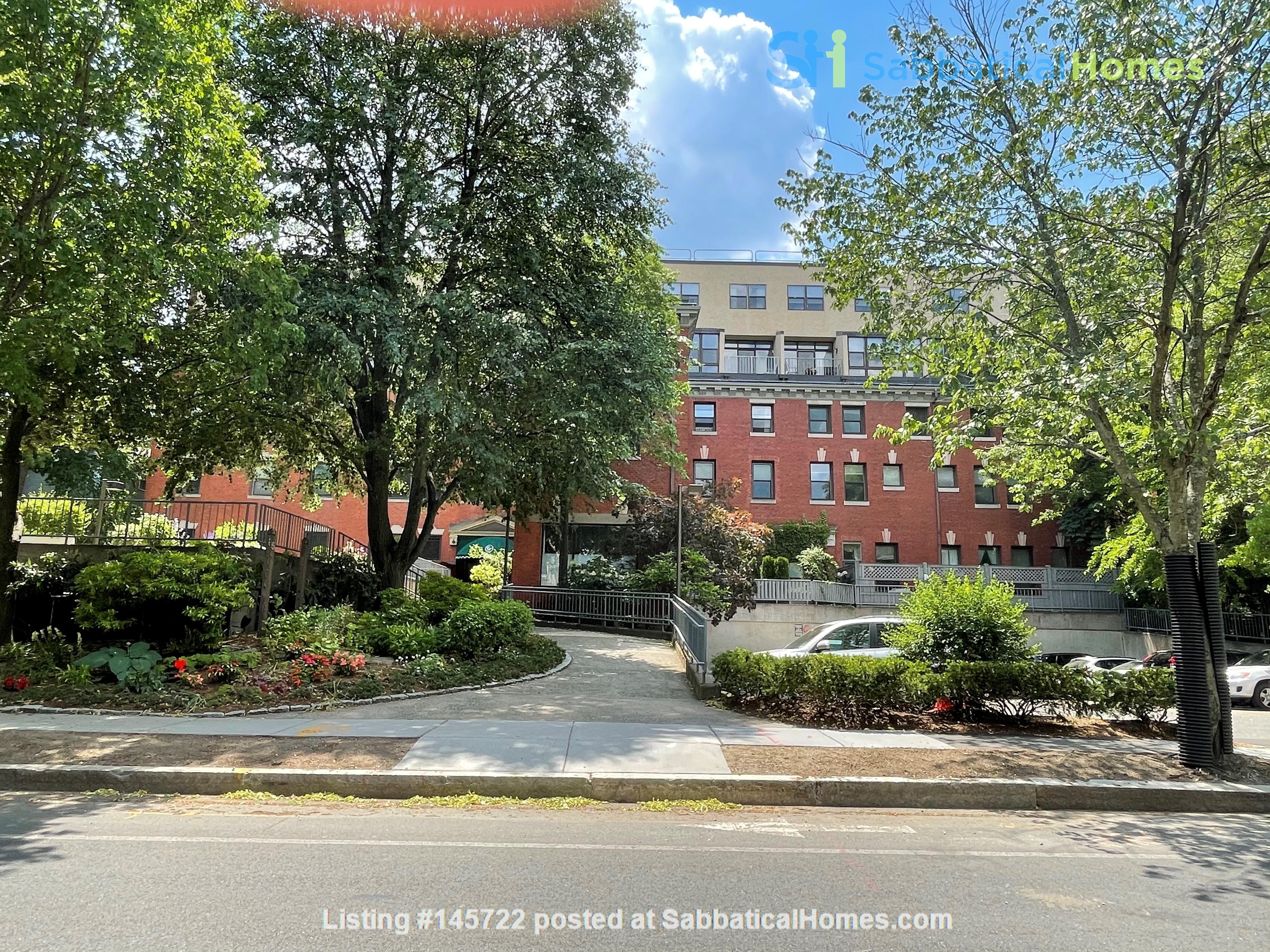 Stunning apartment in the lovely neighborhood of Coolidge Corner Home Rental in Brookline, Massachusetts, United States 0