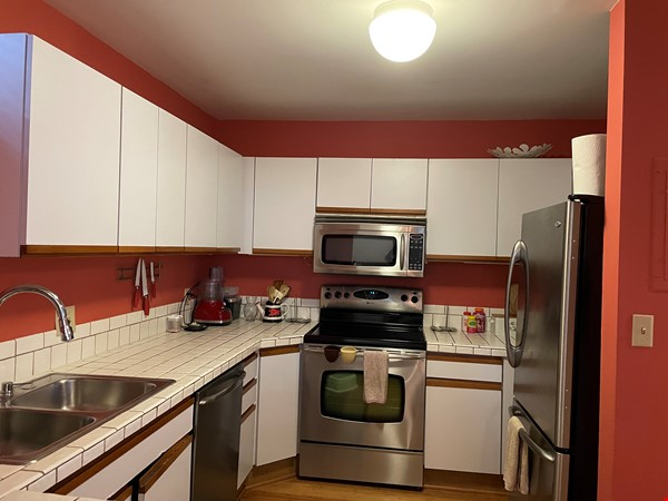 Stunning apartment in the lovely neighborhood of Coolidge Corner Home Rental in Brookline 6 - thumbnail