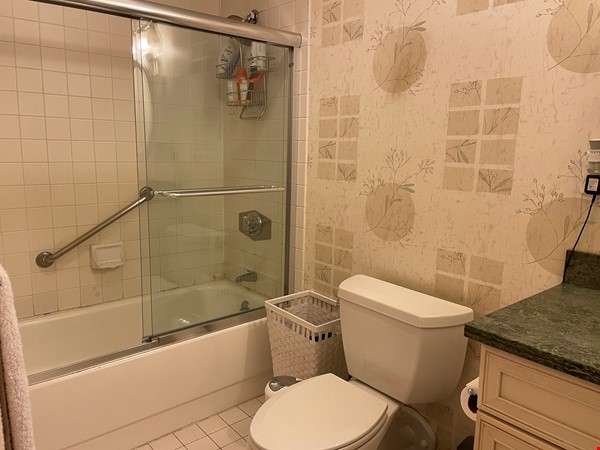Stunning apartment in the lovely neighborhood of Coolidge Corner Home Rental in Brookline 5 - thumbnail