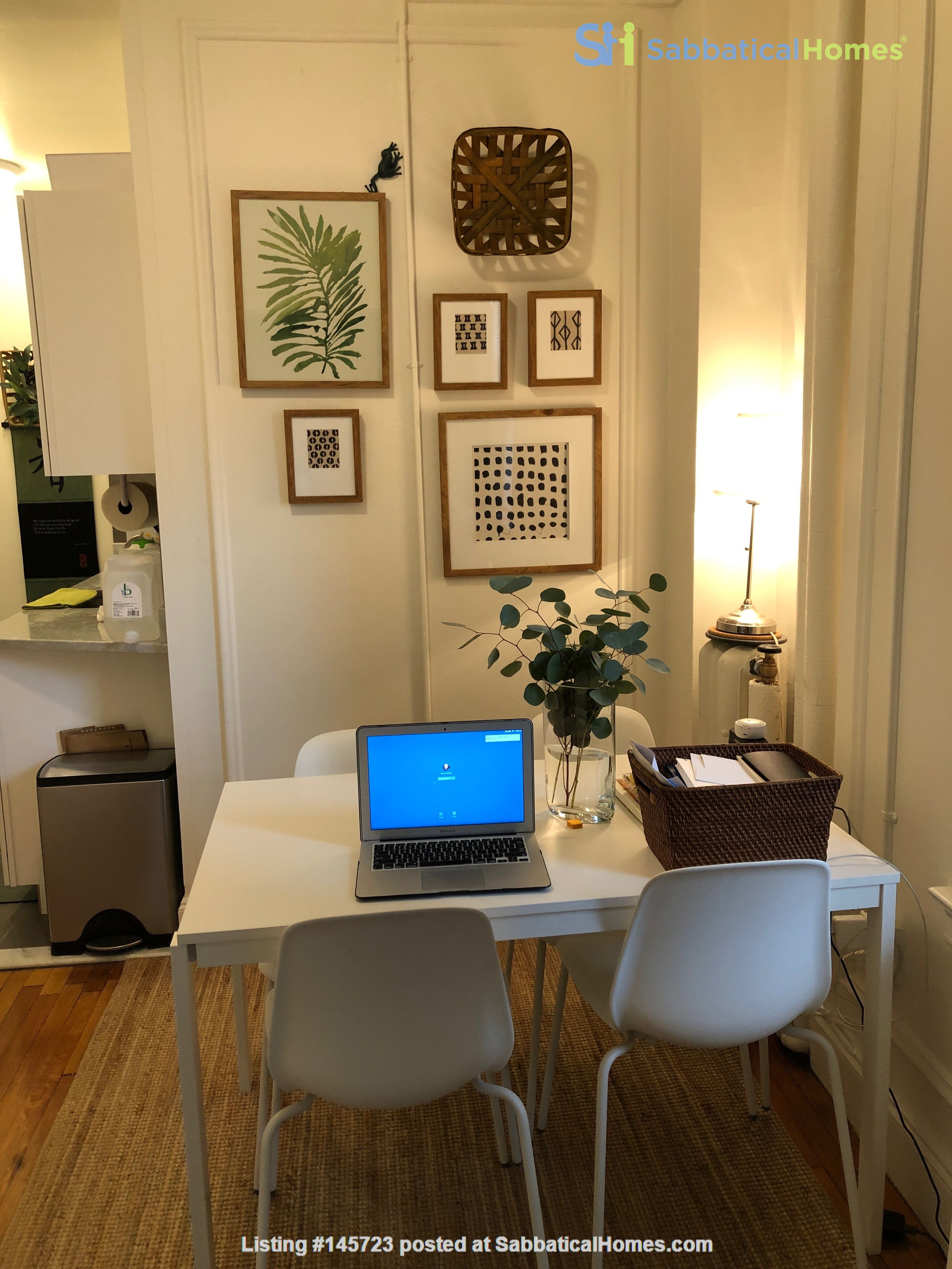 For Rent: A wonderful apartment in the heart of Harvard Square! Home Rental in Cambridge, Massachusetts, United States 3