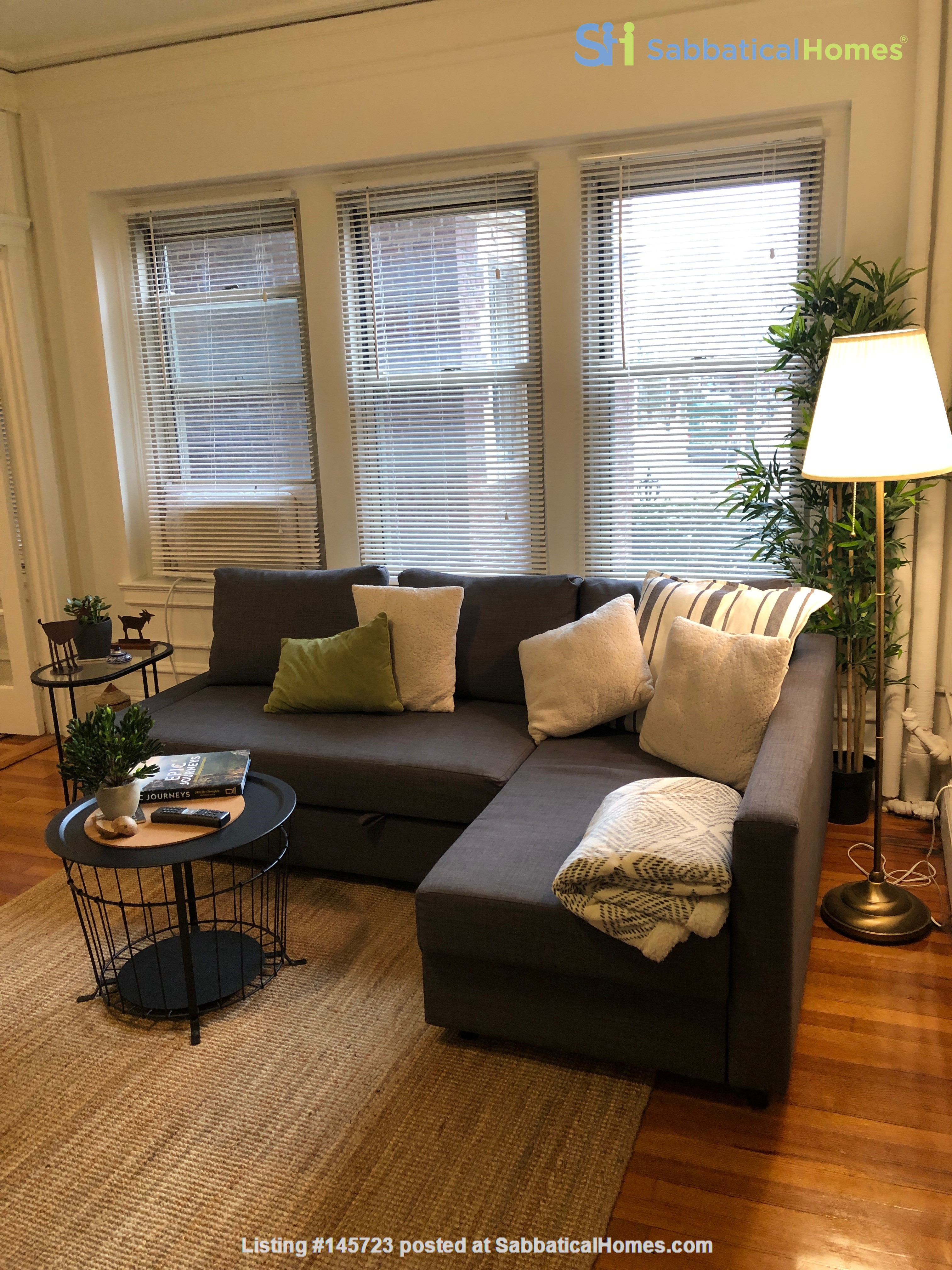 For Rent: A wonderful apartment in the heart of Harvard Square! Home Rental in Cambridge, Massachusetts, United States 2