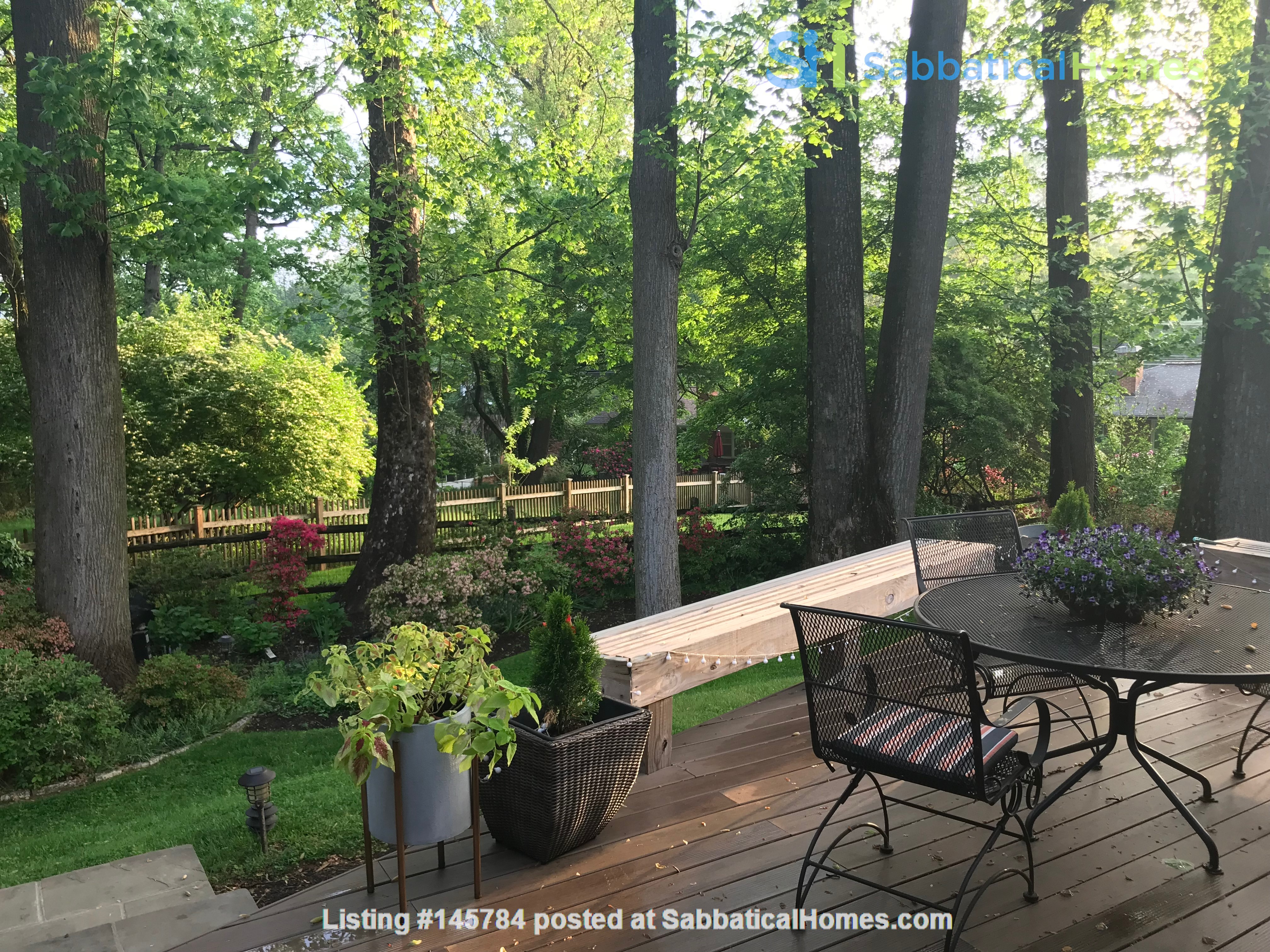 Renovated mid-century modern home (furnished) in desirable Chevy Chase, MD Home Rental in Chevy Chase 7