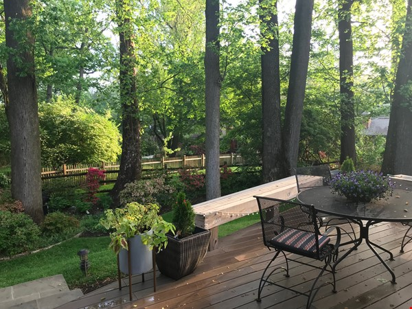 Renovated mid-century modern home (furnished) in desirable Chevy Chase, MD Home Rental in Chevy Chase 7 - thumbnail