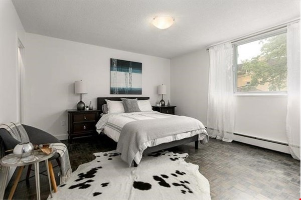 Bright 3 bedroom near SMU, Dalhousie, downtown Halifax and the waterfront. Home Rental in Halifax 2 - thumbnail