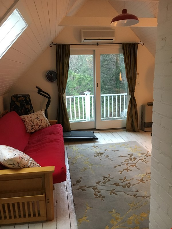 Lovely furnished 4-br, short beautiful walk from Cornell, for spring 2022 Home Rental in Ithaca 3 - thumbnail