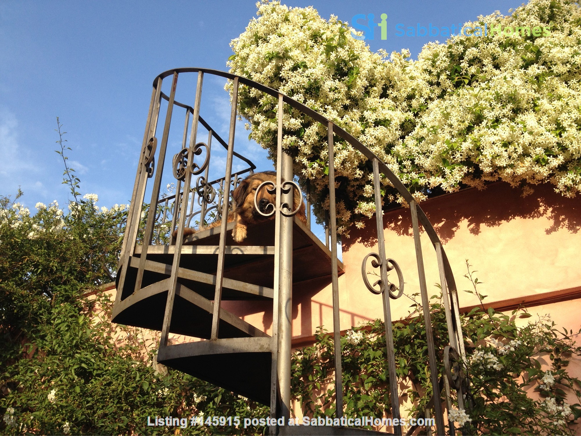 A cottage in Rome between the city and the countryside Home Rental in Roma 1