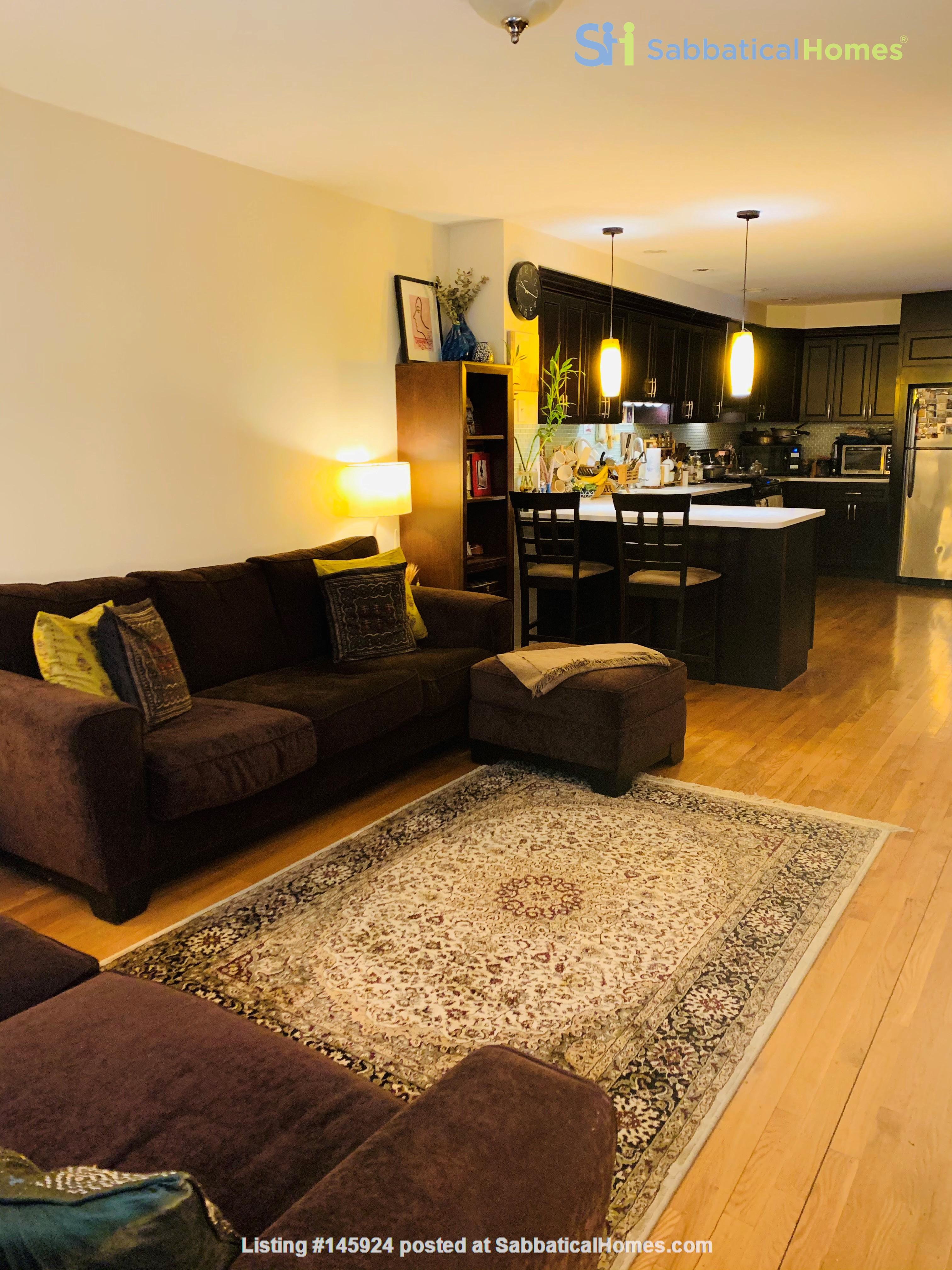 Modern, sunny, 2 bed 1 bath 1st floor unit with W+D, den & backyard garden Home Rental in Cambridge 0