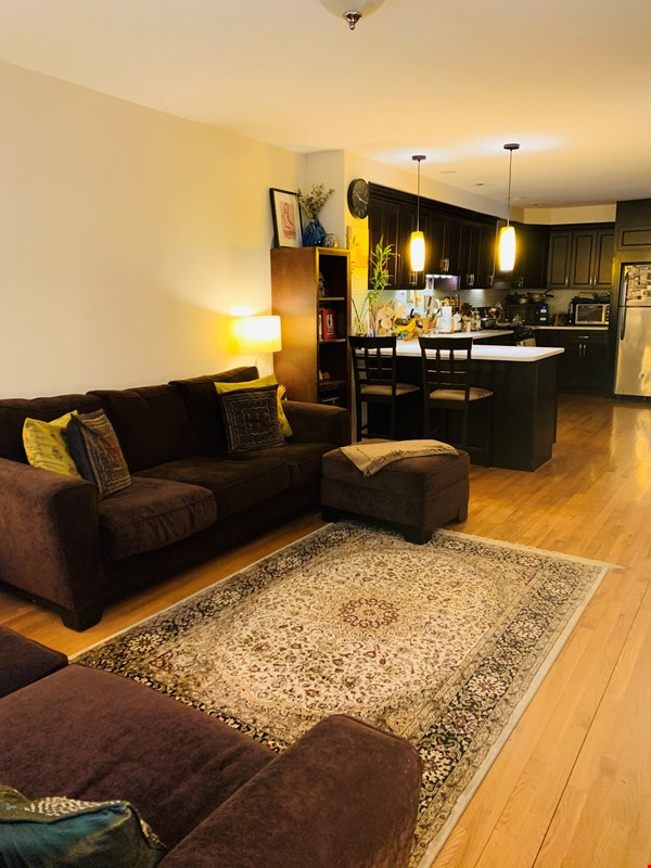 Modern, sunny, 2 bed 1 bath 1st floor unit with W+D, den & backyard garden Home Rental in Cambridge 0 - thumbnail