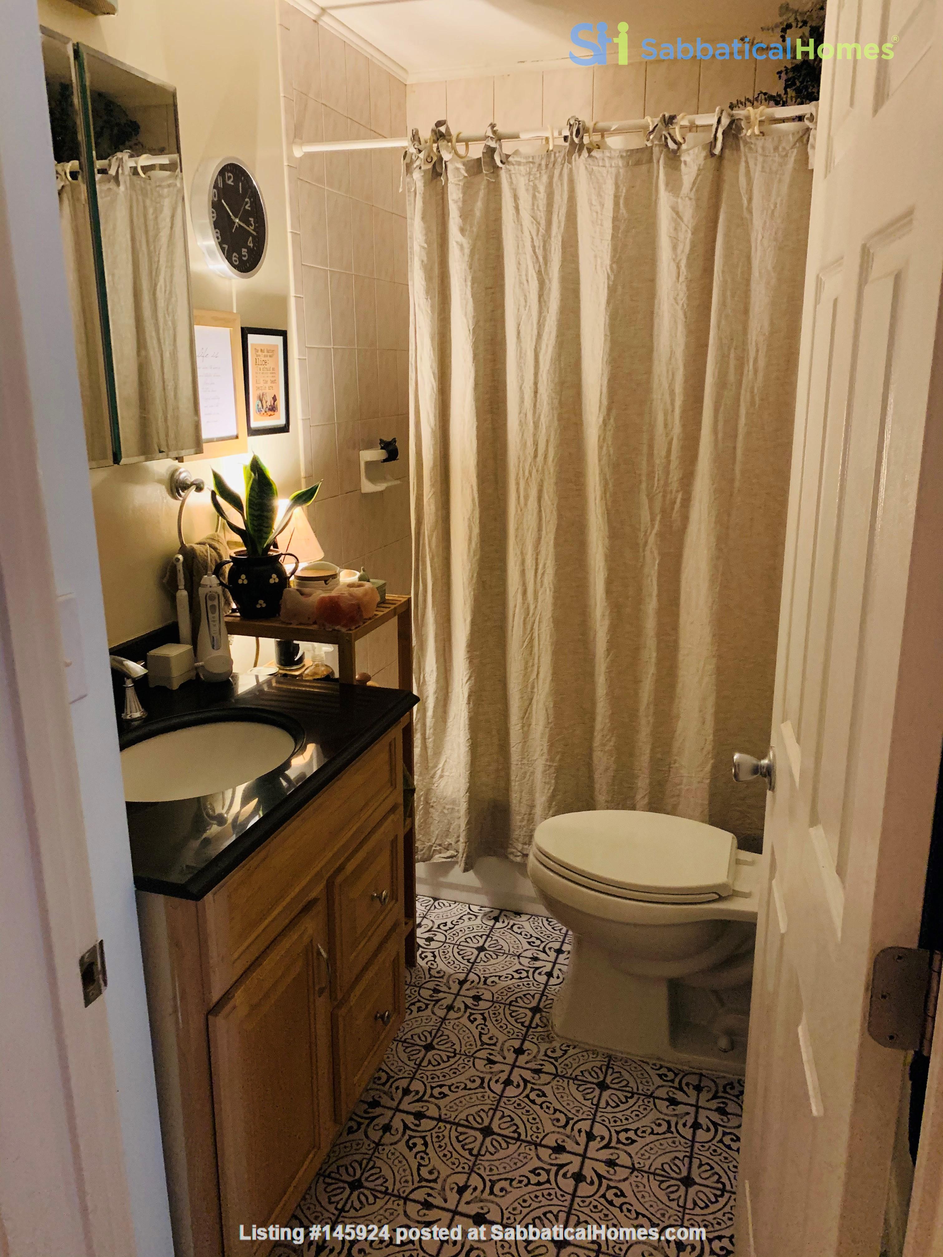 Modern, sunny, 2 bed 1 bath 1st floor unit with W+D, den & backyard garden Home Rental in Cambridge 4