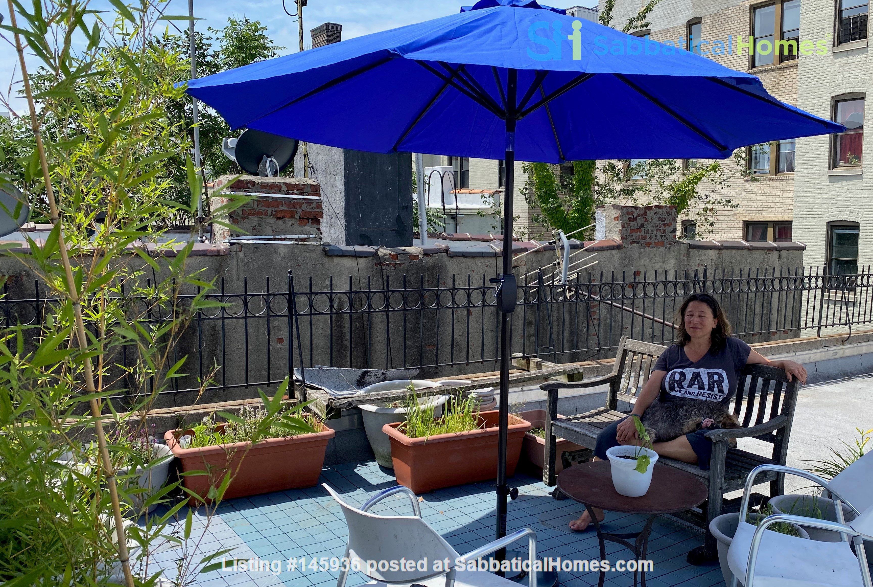 Sunny, Large, Renovated, Quiet, Ample 2BR+Studio/Office in Crown Heights Home Rental in  3