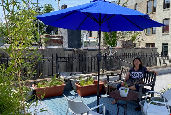 Sunny, Large, Renovated, Quiet, Ample 2BR+Studio/Office in Crown Heights Home Rental in  3 - thumbnail
