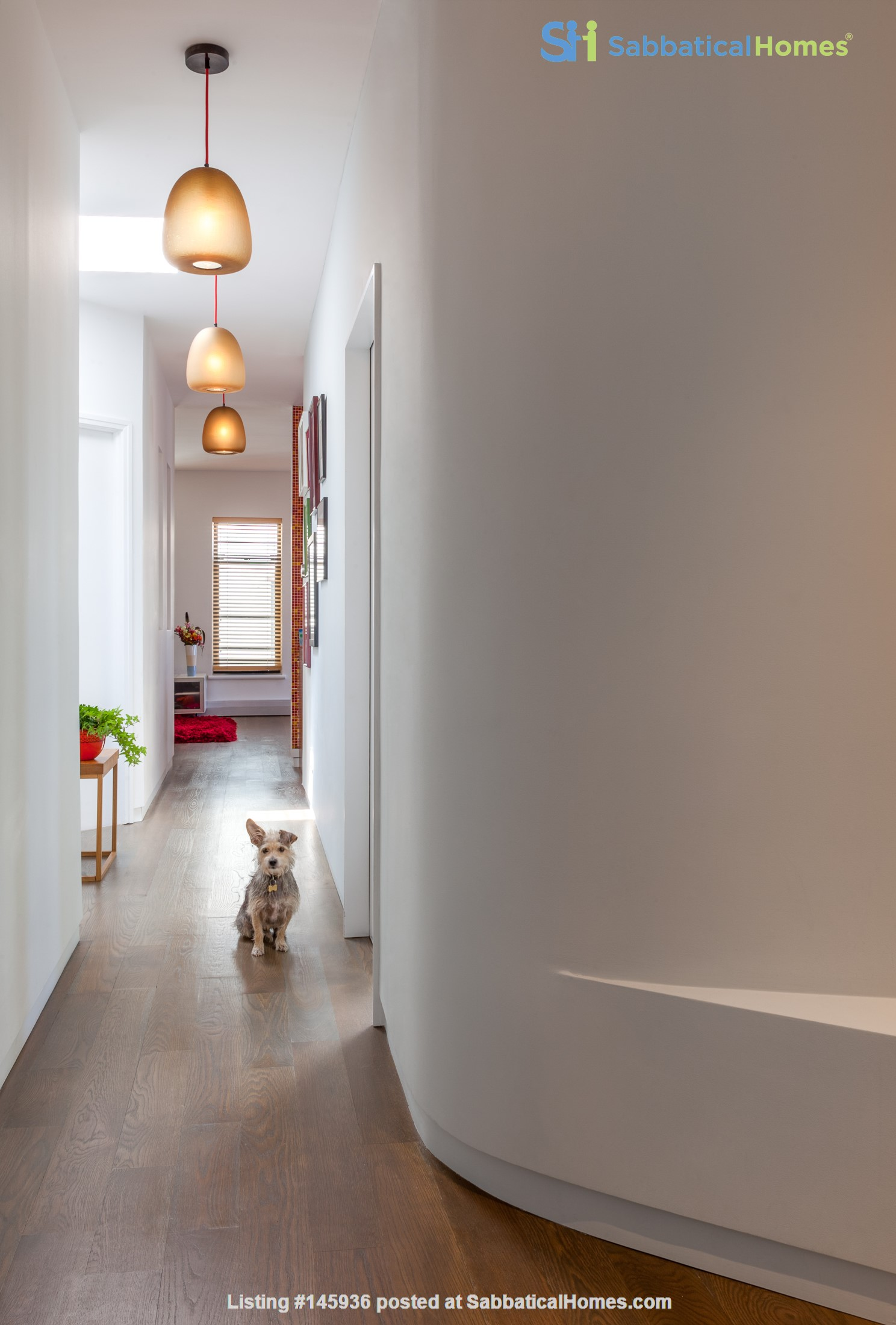 Sunny, Large, Renovated, Quiet, Ample 2BR+Studio/Office in Crown Heights Home Rental in  0