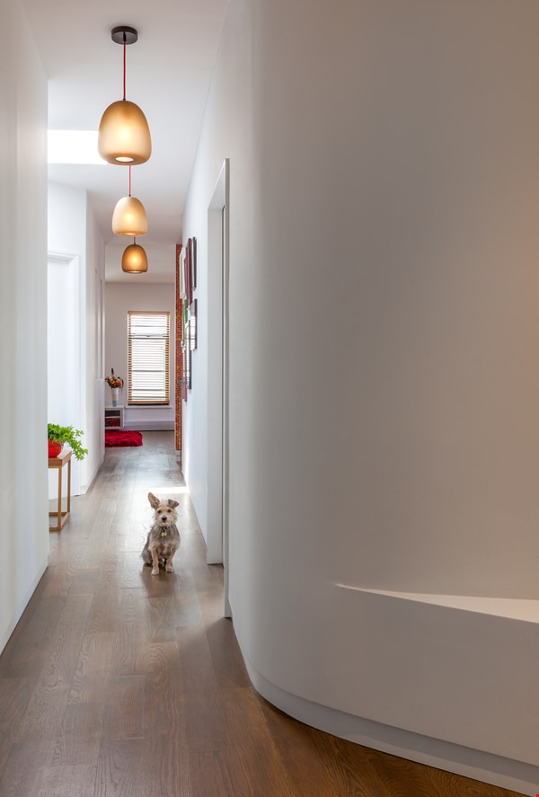 Sunny, Large, Renovated, Quiet, Ample 2BR+Studio/Office in Crown Heights Home Rental in  0 - thumbnail