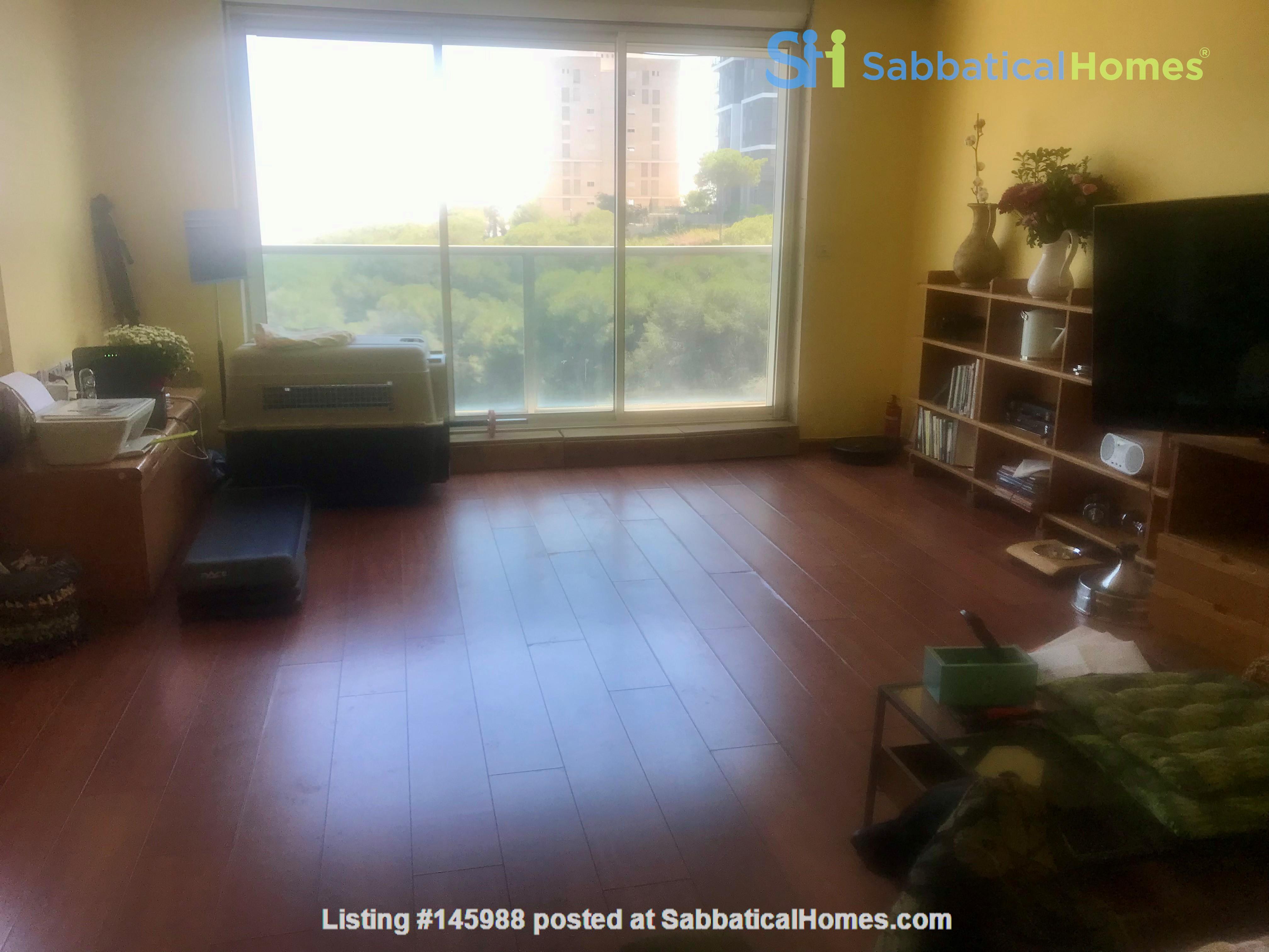 Mountain-top apartment near Technion & UoHaifa Home Rental in Haifa 6