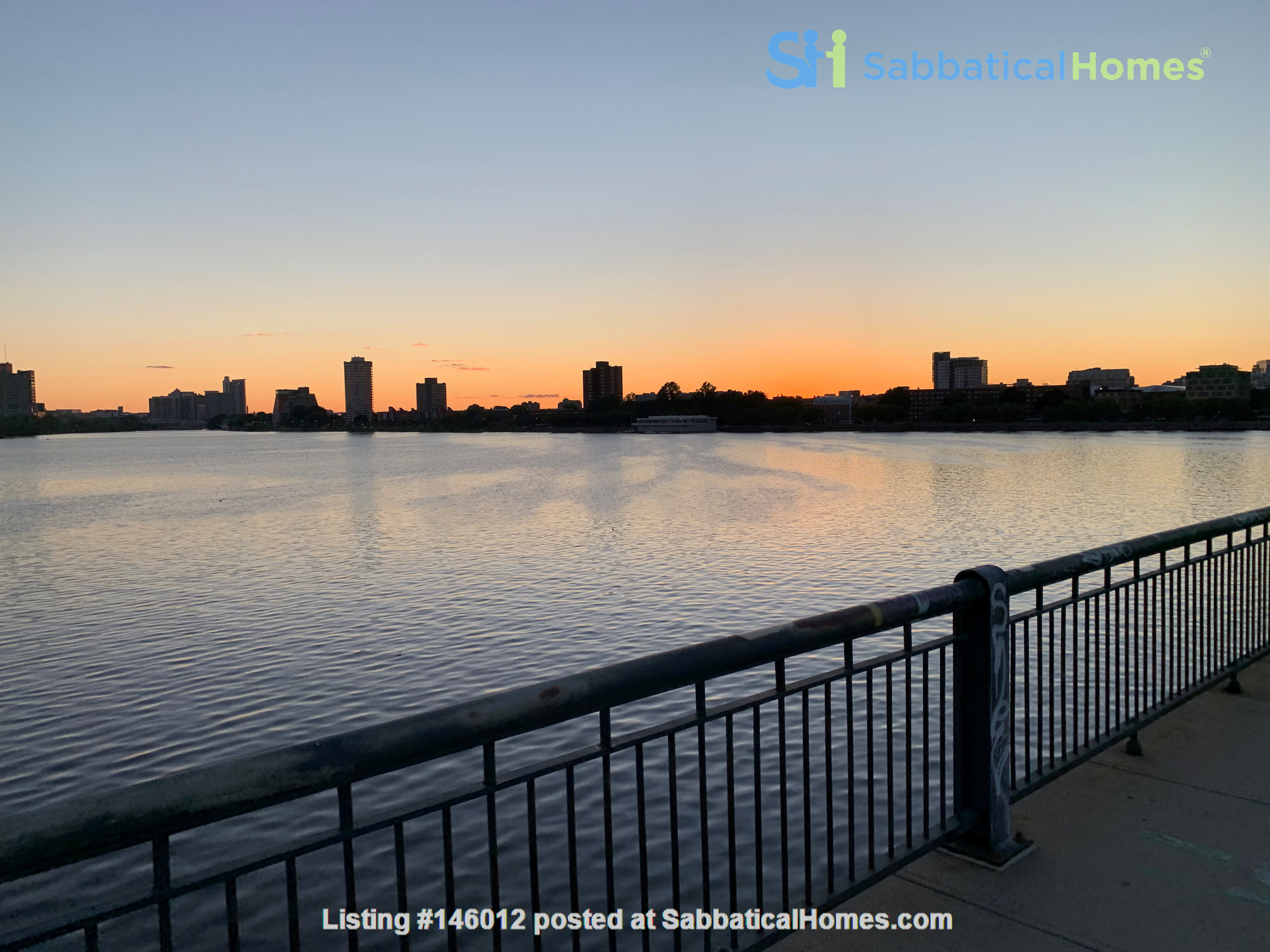 Lovely furnished 2-bedroom with private yard between Harvard and MIT Home Rental in Cambridge 6