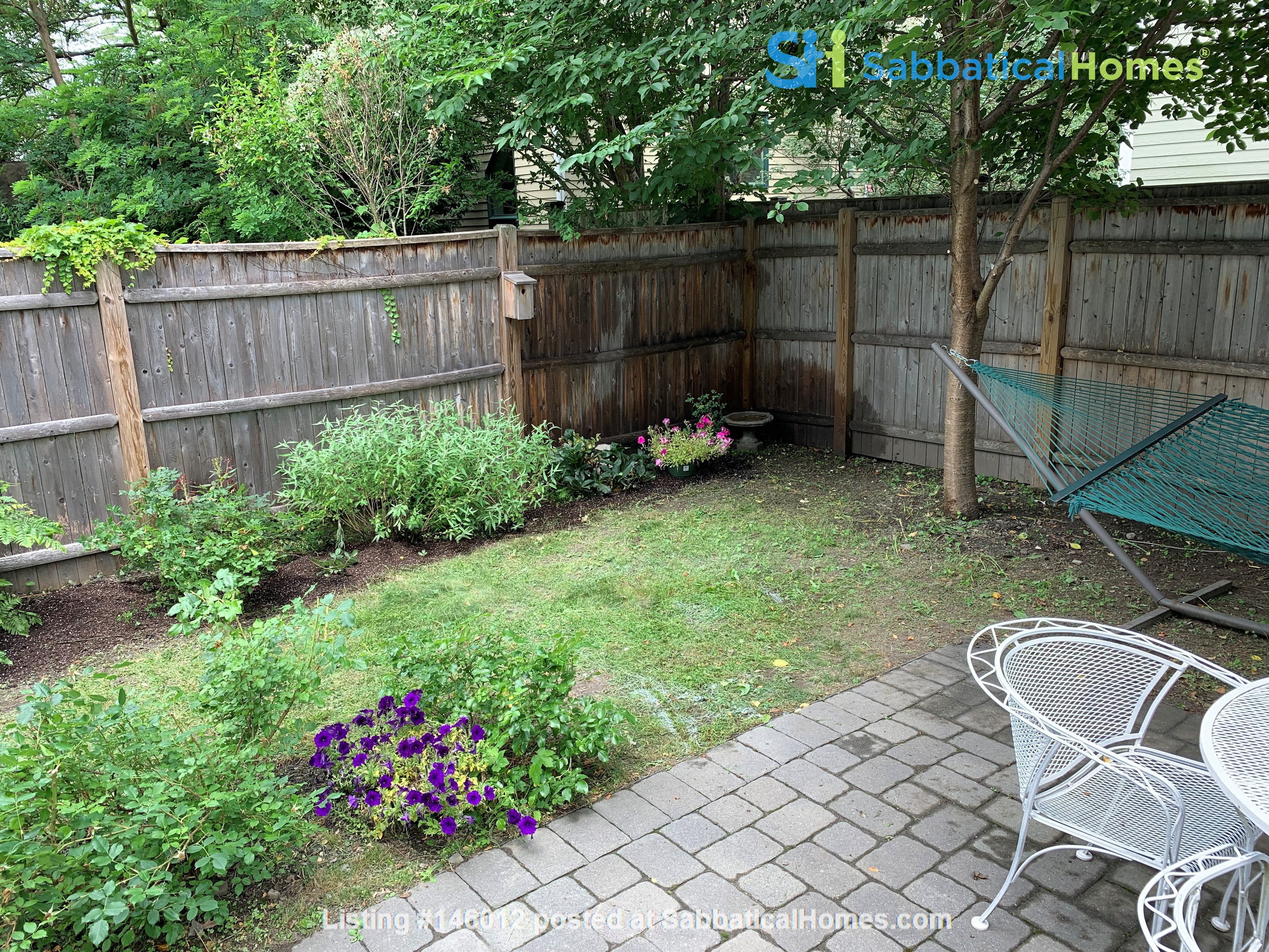 Lovely furnished 2-bedroom with private yard between Harvard and MIT Home Rental in Cambridge 1