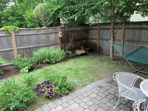 Lovely furnished 2-bedroom with private yard between Harvard and MIT Home Rental in Cambridge 1 - thumbnail