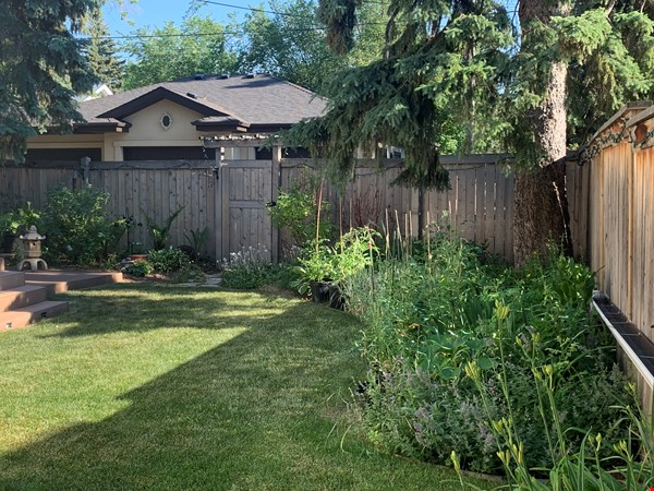 Forest haven sabbatical home Home Rental in Edmonton 2 - thumbnail