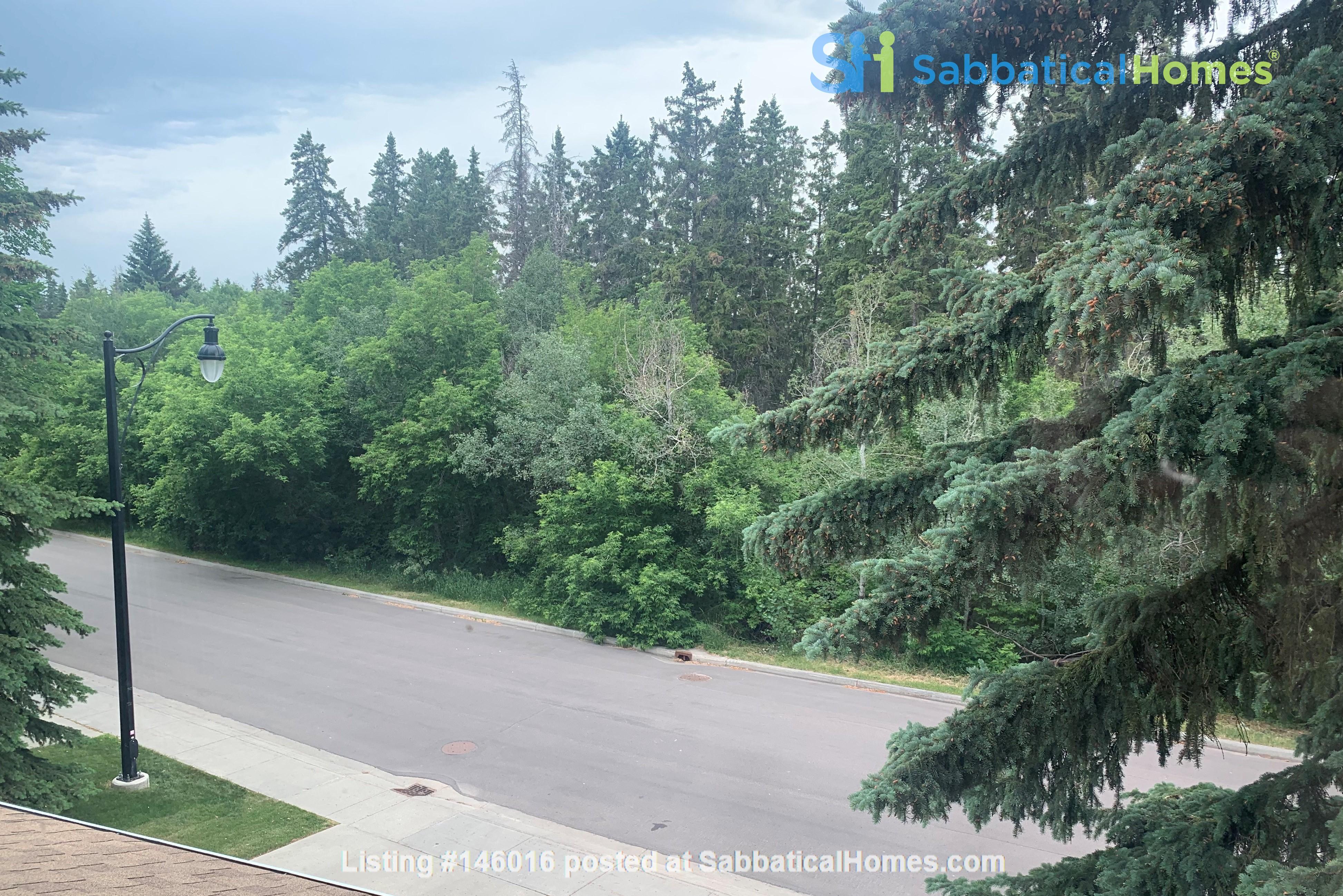 Forest haven sabbatical home Home Rental in Edmonton 0