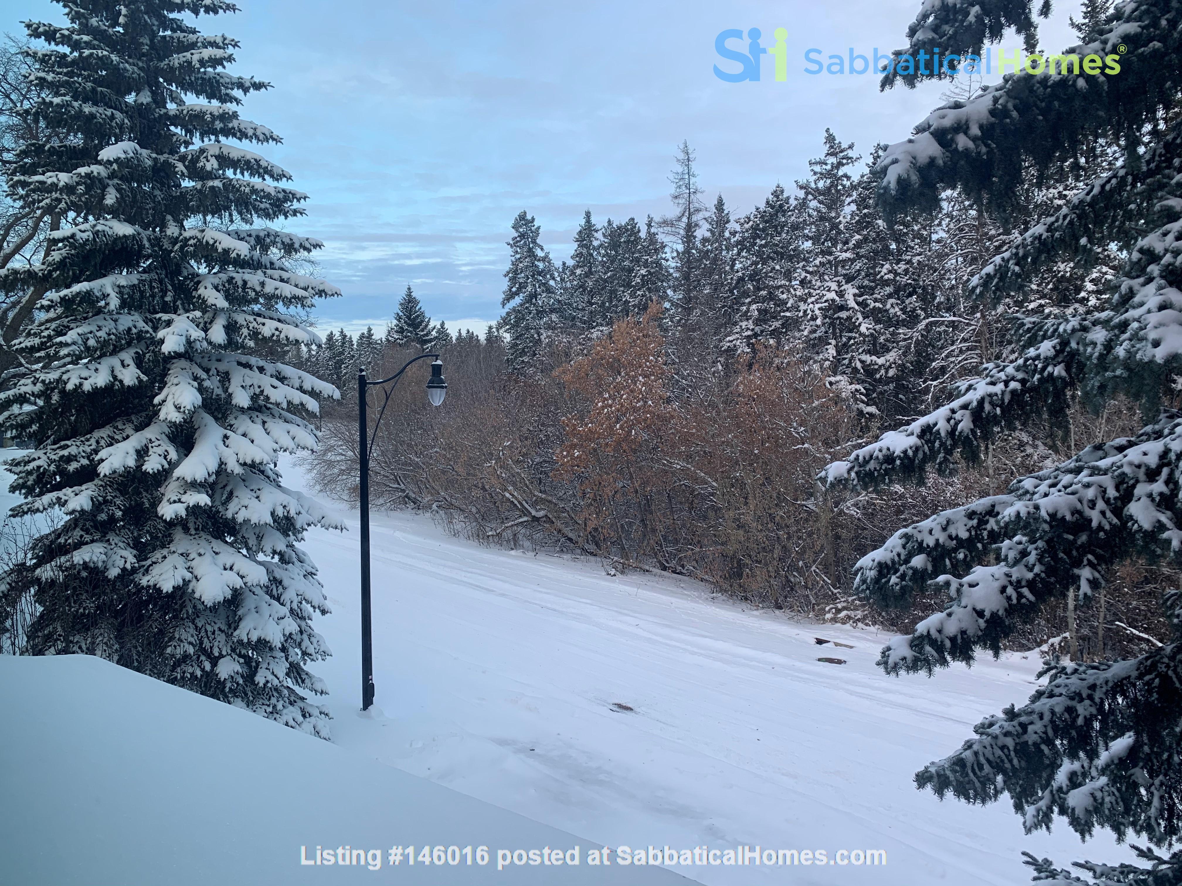 Forest haven sabbatical home Home Rental in Edmonton 4