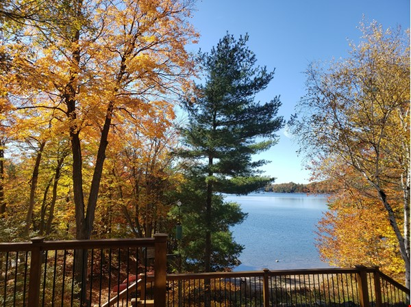 Beautiful nature retreat on lake Home Rental in  0 - thumbnail