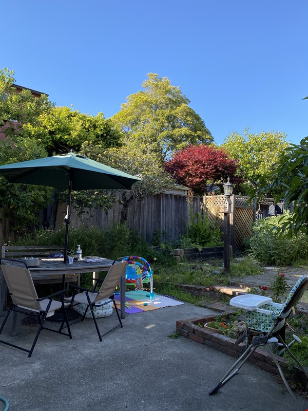 Single family home with lovely garden and hot tub in walkable neighborhood! Home Rental in El Cerrito 5 - thumbnail