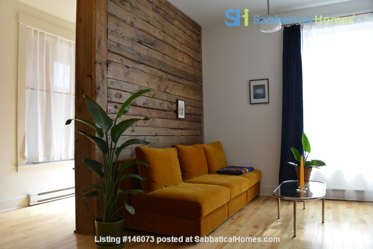 New Studio Apartment Little Italy Home Rental in Montréal 1