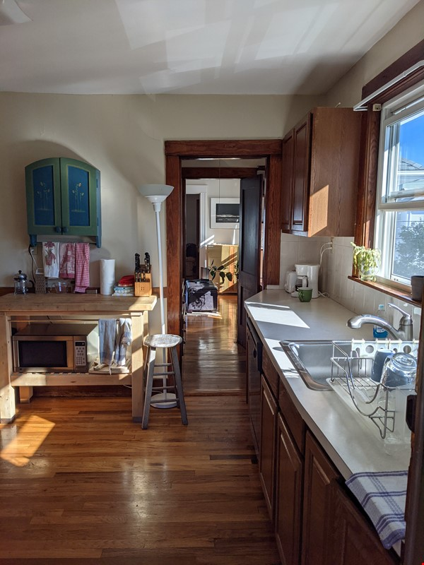 Sunny room in quiet, comfy apartment on the edge of Cambridge. Home Rental in Arlington 2 - thumbnail