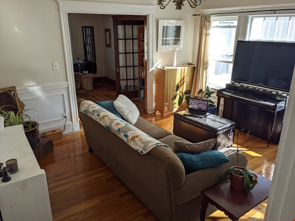 Sunny room in quiet, comfy apartment on the edge of Cambridge. Home Rental in Arlington 4 - thumbnail