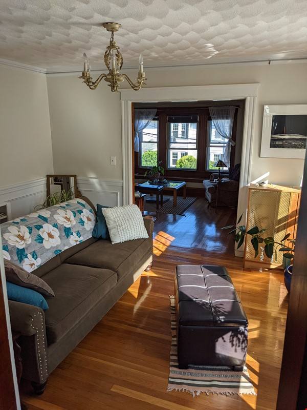 Sunny room in quiet, comfy apartment on the edge of Cambridge. Home Rental in Arlington 1 - thumbnail
