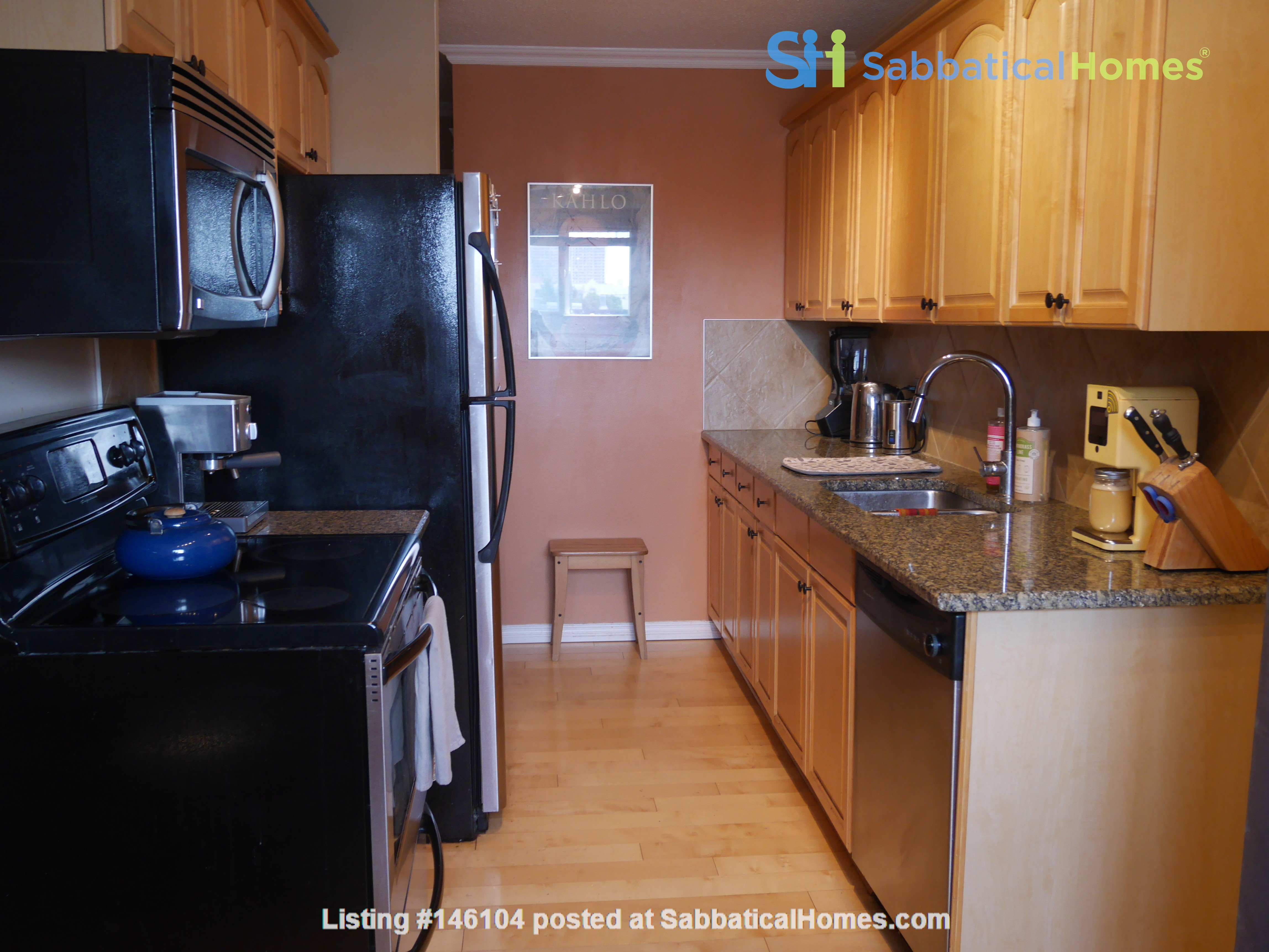 Top corner condo, heart of Old Strathcona. Great space for academic/couple! Home Rental in Edmonton 4