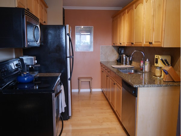 Top corner condo, heart of Old Strathcona. Great space for academic/couple! Home Rental in Edmonton 4 - thumbnail