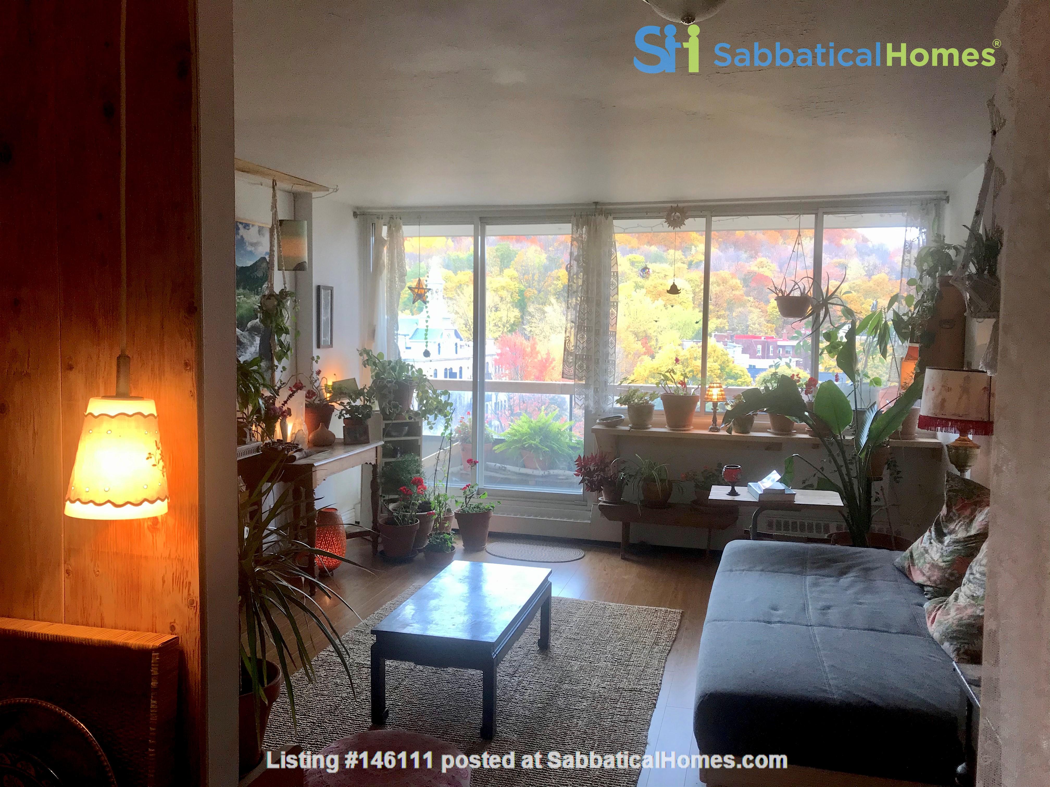 Sunniest nest in heart of Montreal /2 bedrooms Home Exchange in Montréal 5