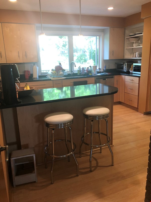 Fully furnished Midcentury Modern House in quiet Mid-town Madison Home Rental in Madison 2 - thumbnail