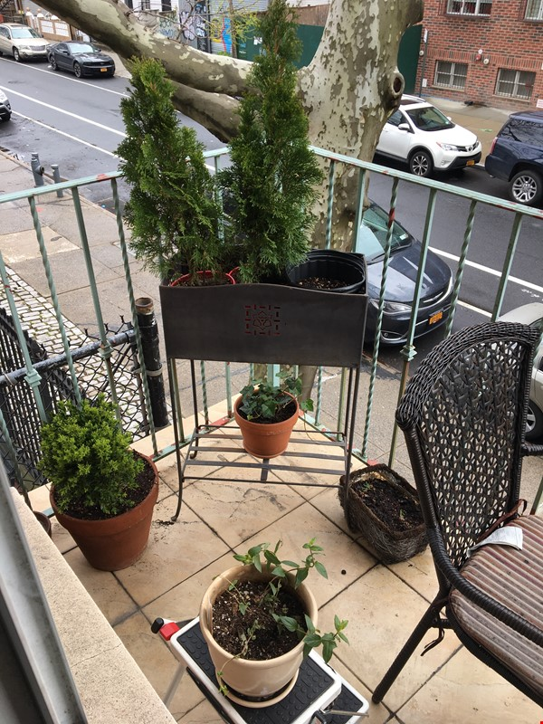Furnished Apartment/ Balcony in Brooklyn Home Rental in  7 - thumbnail