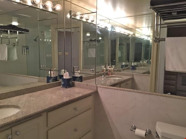 Elegant furnished 1-bedroom condo in French Quarter Home Rental in New Orleans 8 - thumbnail